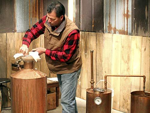 distiller grain - 4