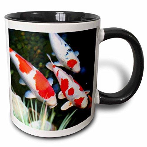 3dRose 62378_4 Tasse, japanisches Orange n White Koi Fish, zweifarbig, Schwarz, 325 ml, mehrfarbig