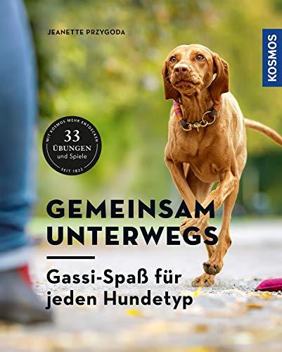 Gemeinsam unterwegs: Gassi-Spaß für alle Hundetypen