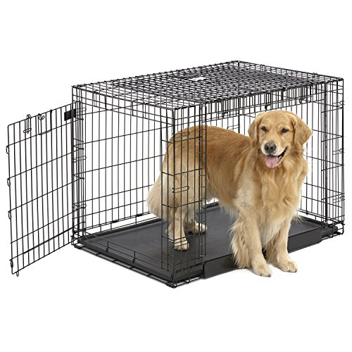 MidWest Homes for Pets Ovation Double Door Dog Crate, 42-Inch 20% AmazonPets Basic Crates Dog from Midwest on Pet products Save Select Selection Supplies to Top up
