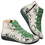2019 Botas para Mujer, Soporte del Arco, Cómodos Botines de Deslizamiento Plano para Mujer, Zapatos Casuales para Mujer Otoño Invierno con Hebilla con Cremallera (39, Copo de Nieve)