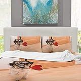 CUDEVS AA Romantic Dog Jack Russell Terrier,King Bed Set for Teal Singe