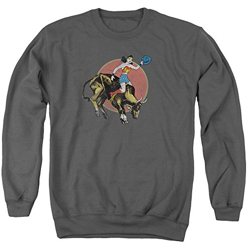 Bull Rider Sweater - Justice League, Large, Charcoal