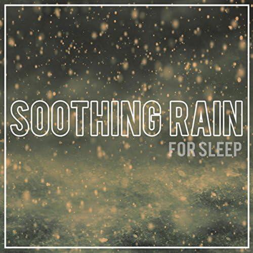 Rain Sounds, Nature Sounds & Ocean Sounds