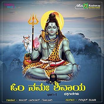 Om Namha Shivaya, Vol. 1