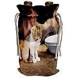 3dRose Danita Delimont - Cats - Cat on dining table, La Cumbre, Ixtahuacan, Guatemala - SA10 PBO0045 - Phil Borges - Wine Bag (wbg_86537_1)