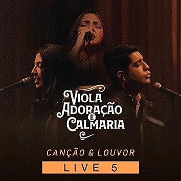 Viola, Adoração e Calmaria: Live 5