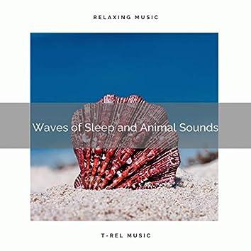 2021 Waves of Sleep and Animal Sounds