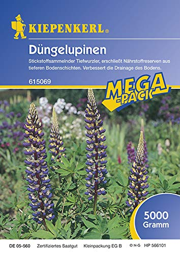 Kiepenkerl Gründünger Düngelupinen 5kg - 615069