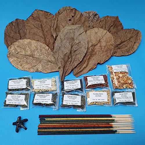Schmitt Aquaristik Futter-Set für Garnelen und Krebse / 10 Shrimp Lollies mit Halter + 10x10g Sticks + 10 Seemandelbaumblätter