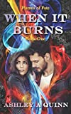 When It Burns (Flames of Fate)