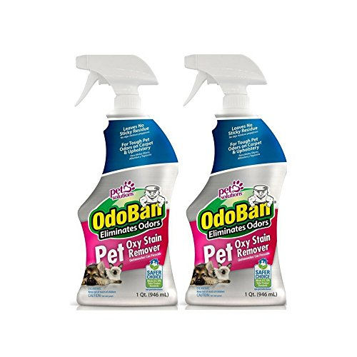 OdoBan Pet Oxy Stain Remover, 32 fl. oz. Spray 2 Pack - Deep Cleaning for Tough Odors