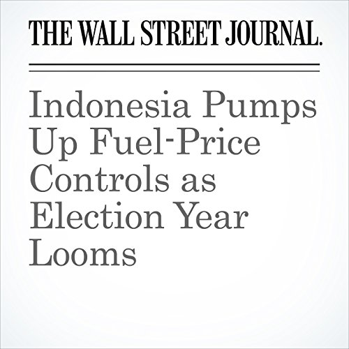 Indonesia Pumps Up Fuel-Price Controls as Election Year Looms copertina