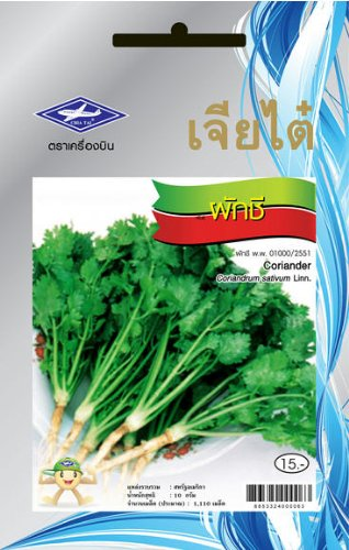 Coriander (1100 Seeds Per Package) - From Chai Tai, Thailand