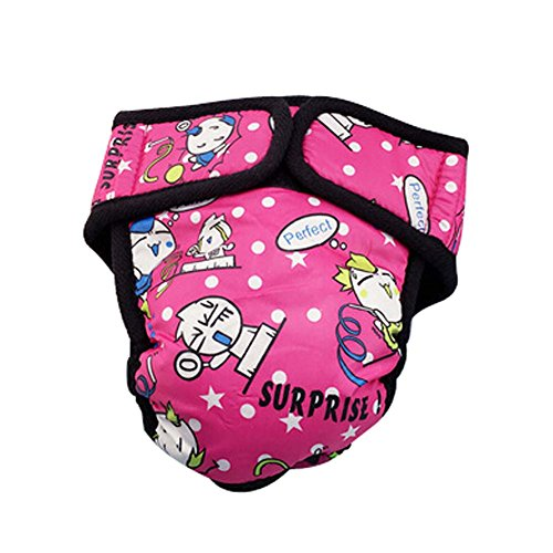 Animaux Chiens Sous-vêtements Pantalons Physiological Fuchsia Silhouette, L