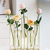 LACKINGONE 5 pcs Flower Vase Metal Stand Decorative Glass Flower Vase Metal Stand Hinged Bud Test Tubes Vases Display Set for Home Décor