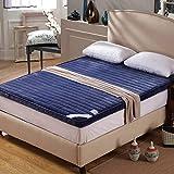 LJYY tapete para Piso Dormitorio, tapete para Piso Colchón para futón Topper Bed-C 180x200cm (71x79inch)