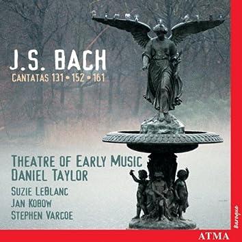 Bach, J.S.: Cantatas, Bwv 131, 152 and 161
