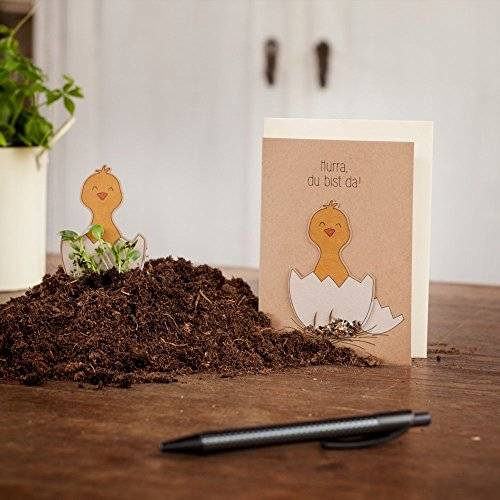 """Geburtskarte \""""Hurra, Du bist da!\"""" - Saatstecker Karte mit Küken - mit eingearbeiteten Wildblumensamen - Grußkarte zur Geburt für Junge & Mädchen - Babykarte mit Blumensamen"""