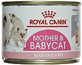 Royal Canin Babycat Instinctive, Comida para gatos, 195 g