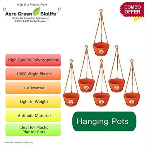 Green and Pure - Premium Quality Hanging Pots | Flower Planter | Plant Containers Pack of 6 - Brown Colour
