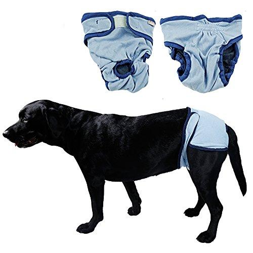 s-lifeeling Hund weiblich Windeln Puppy Jelly Case Protektoren Hose Puppy groß/klein