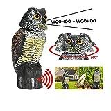Bravoy - Gufo Spaventapasseri con suono spaventoso per allontanare gli uccelli, 360 giri...