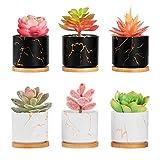 Richaa 6 Pezzi Vaso per piante Grasse in Ceramica ,Vasi per Fioriere di Cactus con Vassoio in Bambù e foro di Drenaggio per Interni ed Esterni, Decorazioni per il Giardino di Casa
