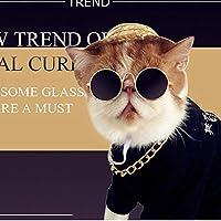 ファッション猫のメガネ耐久性のあるメガネ猫のグルーミング犬のサングラスクールなメガネユニバーサルペット用品、黒、8 * 3cm