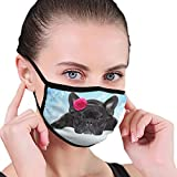 CZLXD - Máscara Antipolvo para Perro, Color Negro