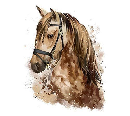 Digitales Malen Pferdekopf Handmalerei Hauptdekoration Geschenke Auf Leinwand, Erwachsene Kinder Benutzerdefinierte Freizeit DIY Raum Wandmalerei 40 * 50Cm