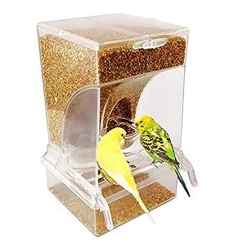 Best parakeet feeders Reviews