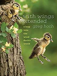Wing Outstretched: A Leap into the World of the Wood Duck, by Greg Hoch, University of Iowa Press