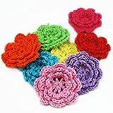 Bluemoona 20 PCS - Big Crochet Sewing Flower Embellishment Applique Trim Mixed Colors 2' 50M