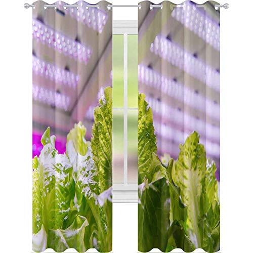 YUAZHOQI - Cortina opaca ecológica hidropónica para cultivo de verduras con luz LED, tecnología de agricultura, 52 x 241 cm, reducción de ruido