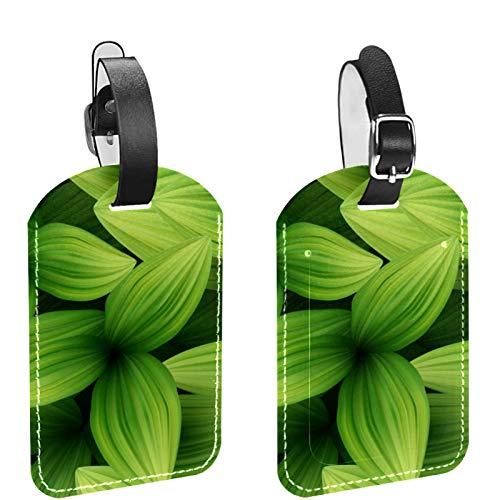 Etiquetas de equipaje, de cuero personalizado etiqueta de equipaje conjunto de etiquetas de identificación de equipaje accesorios de viaje, juego de 2 hojas tropicales verdes patrón 3