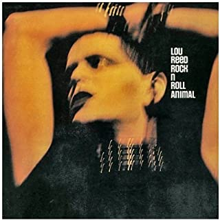 Rock & Roll Animal by REED,LOU (2000-03-21)