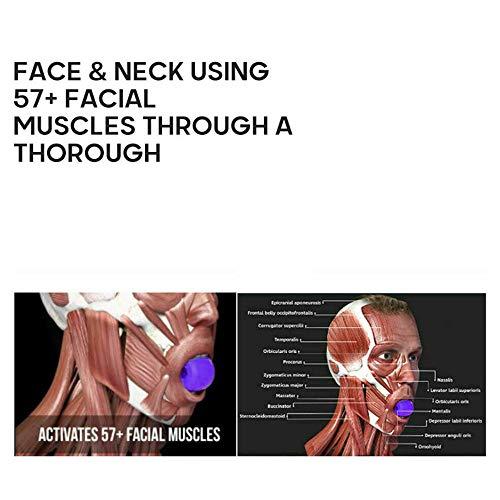 MOSINITTY Kiefer-Trainingsgerät für den Hals, Kauball für Kiefer, Doppelkinn-Trainer, Gesichtsmuskelstraffer, Mundtrainer, Ball für Mund, Hals und Kiefer.