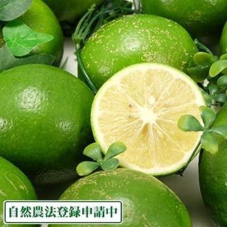 【セール】広島県産(とびしま)早生レモン 3kg 無選別 自然農法登録中 (広島県 とびしま農園) ふるさと21