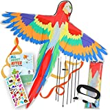 Parrot Kites for Kids Easy to Fly, Large 46 Inch Wingspan Bird Kite for Toddlers and Adults, Single Line Kite for Outdoor Games, Beach and Park Activity, Easy Flyer Kite Kit for Age 5 Years and Above
