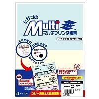ヒサゴ マルチプリンタ帳票 A4カラー2面 (100枚) BP2010