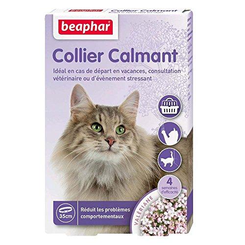 BEAPHAR – NO STRESS – Collier calmant à la Valériane pour chat – Réduit le stress et les problèmes comportementaux sans dépendance ni somnolence – 1 collier 35 cm – 4 semaines d'action