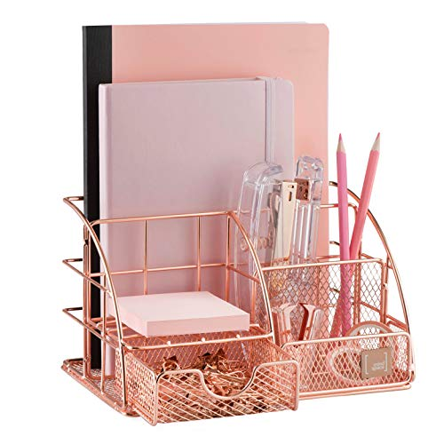 Mindspace Office Desk Organizer with 6 Compartments  Drawer with matching Paper Clips Binder Clips  The Mesh Collection Rose Gold