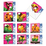 The Best Card Company - 10 Assorted Valentine's Day Note Cards (4 x 5.12 Inch) - Boxed Valentine Cards, Bulk Set with Envelopes - Love Birds MQ4628VDG-B1x10
