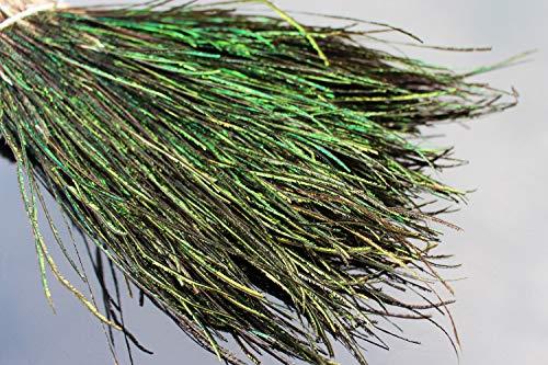 Tigofly 400 fili di piume naturali di pavone per ninfe umide streamers mosche costole corpo legatura mosche materiali 10-20 cm di lunghezza
