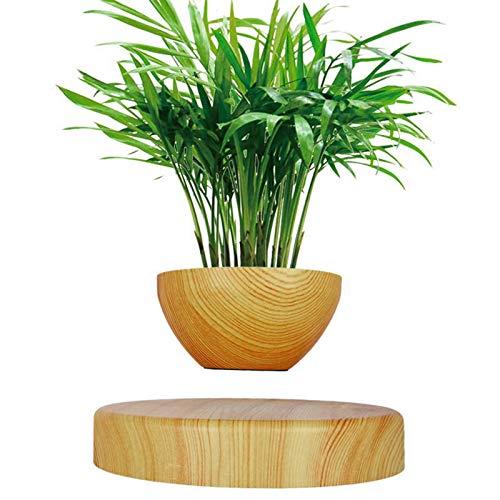 Plantas en macetas de levitación magnética Plantas en macetas aéreas Macetas Colgantes Sala de Estar Oficina Adornos creativos,Plantas en macetas Artificiales FeelFree+