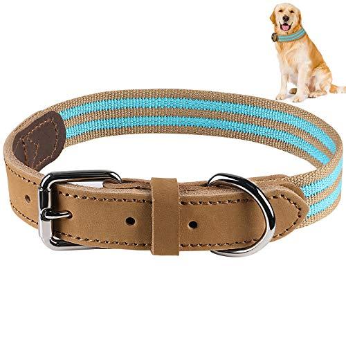 G.C Collar Cuero Perro Grande Pequeño Cachorro Reflectante Ancho Collar (Azul, 60cm)