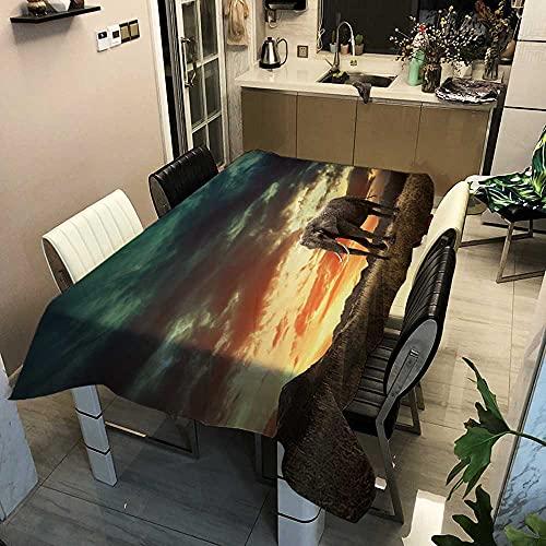 XXDD Cubiertas de Tela de Mesa Mantel Rectangular para Cena Hogar Jardín Cocina Decoración a Prueba de Aceite Cubierta de Mesa de Elefante a Rayas A8 140x160cm