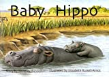 Baby Hippo (New PM Story Books)