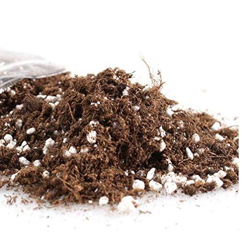 2019 turfbodem turf mos en perliet gemengde bodem goed gedraineerde mix turf en zand bodem tuin hydrocultuur